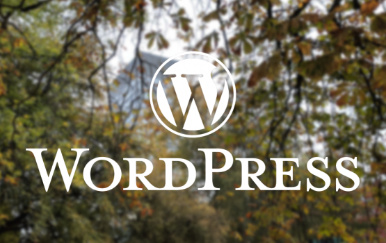 WordPress Training in Sheffield (photograph with text overlay)