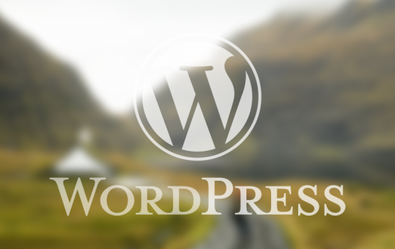 WordPress (logo, photo)